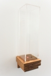 Redwood, Plexiglas, Light, Fly
