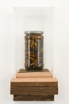 Redwood, Plexiglas, Jar, Tobacco